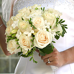 stephanotis roses bride bouquet